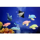 Iwako 60pcs Deep Sea Animals - Sea Turtle Shark Stingray Erasers in Wholesale Box